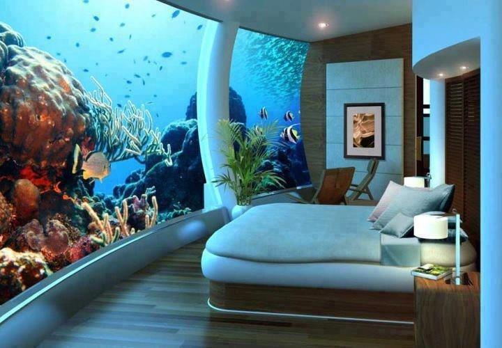 aquarium bed2