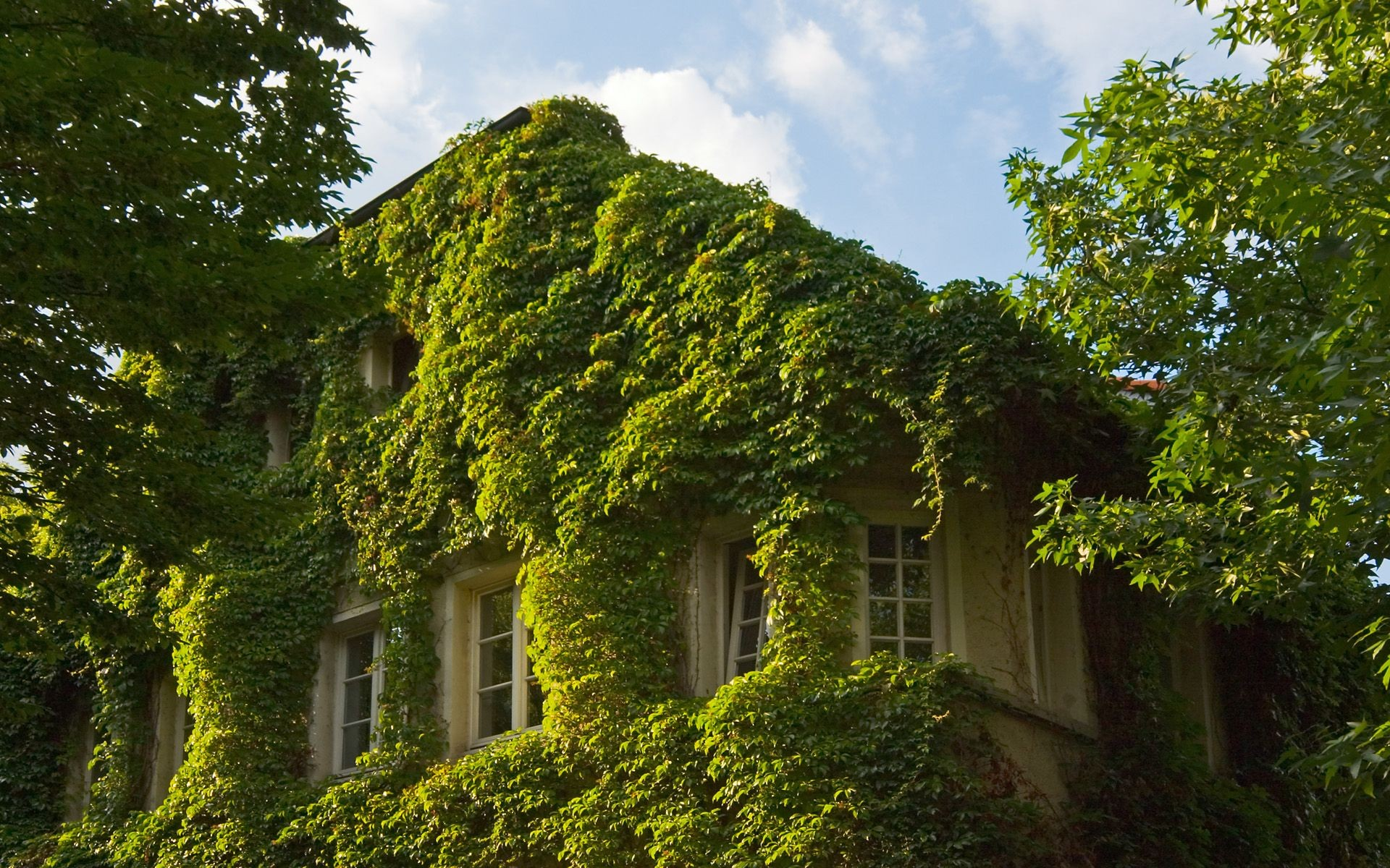 green-nature-houses-_5429-1